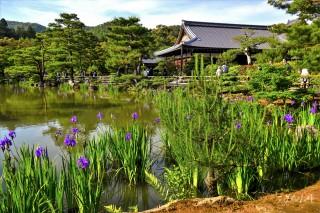 Kinkakuji, the Golden Pavilion, Kyoto