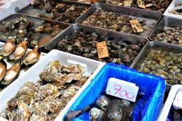 jma_fish_market_tokyo_006