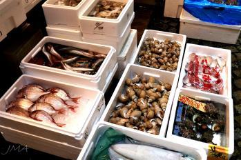 jma_fish_market_tokyo_011