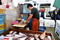 jma_fish_market_tokyo_013