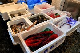 jma_fish_market_tokyo_015