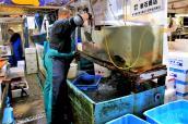 jma_fish_market_tokyo_022
