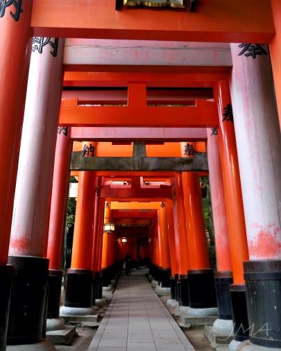 JMA_JAPAN_210