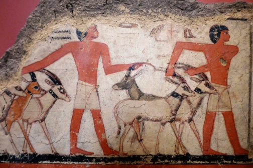 In the ancient Egyptian section