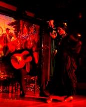 JMA_Flamenco_04