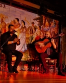 Flamenco night, Madrid, Spain
