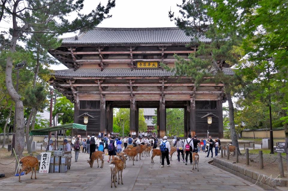 JMA_Nara_09