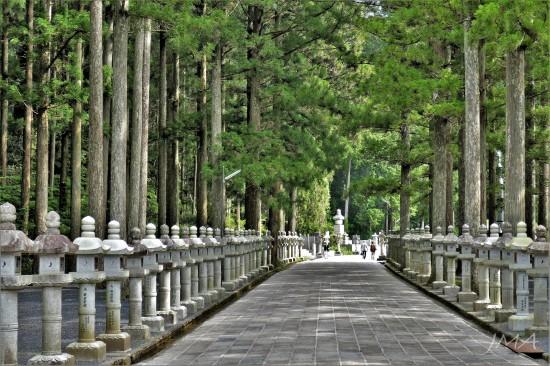 JMA_Koyasan_cemetery_01