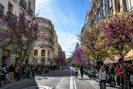 Just a street view. Behind me: Puerta del Sol