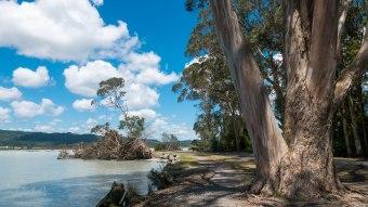 Rotorua lake, New Zealand