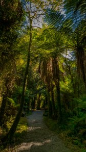 JMA_New_Zealand_023