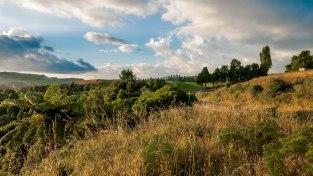 JMA_New_Zealand_010_Tongariro_National_Park