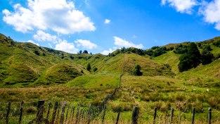 JMA_New_Zealand_014_Northern_Island