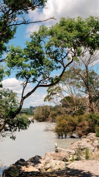 JMA_New_Zealand_017_Rotorua_lake