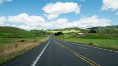 JMA_New_Zealand_025