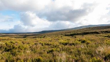 JMA_New_Zealand_038_Tongariro_National_Park