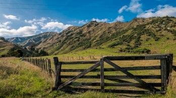 New Zealand, Northern Island