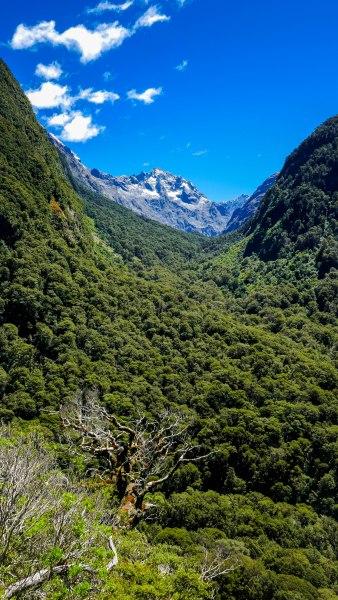 JMA_New_Zealand_042_Milford_Sound