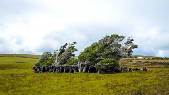 JMA_New_Zealand_060_Slope_Point