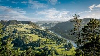 Northern Island, New Zealand