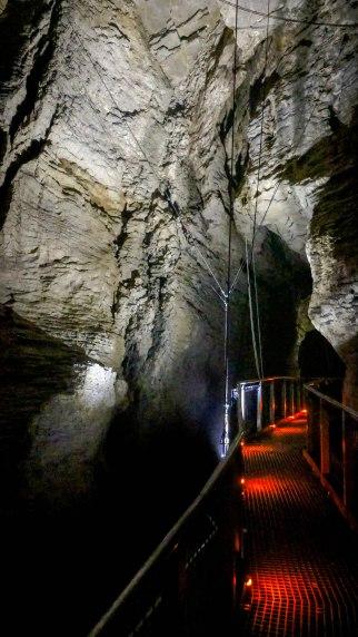 Ruakuri caves, Northern Island, New Zealand