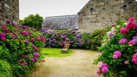 JMA_Bretagne_Locronan_08