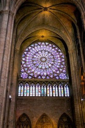 JMA_Paris_Notre_Dame_05