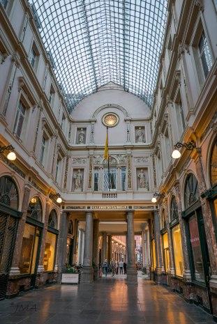 JMA_Brussels_313