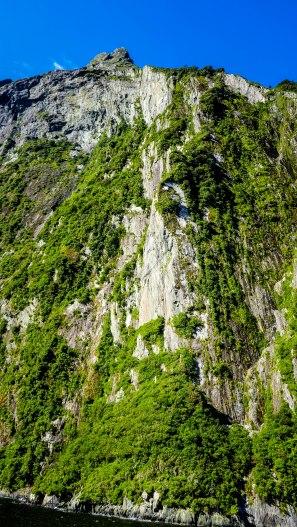 JMA_New_Zealand_215_Milford_Sound