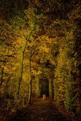JMA_Villa_Nova_at_night_01