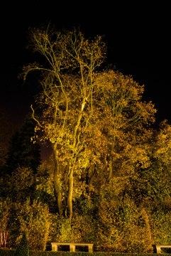JMA_Villa_Nova_at_night_04
